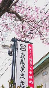 桜2021.3.22撮影